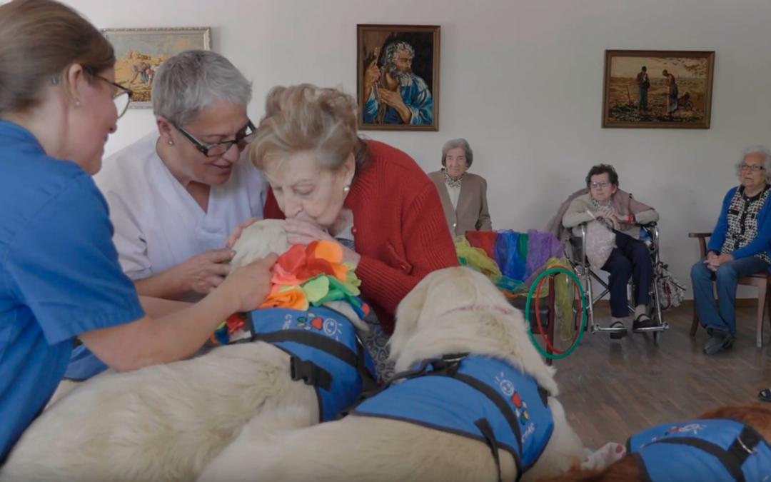Conoce los programas de intervenciones asistidas con animales que apoya BAYER