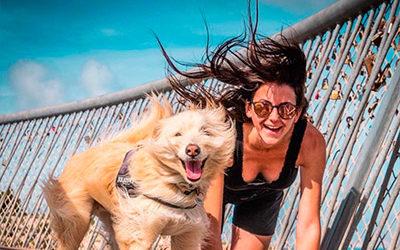 Santa Pola: Premiado como Mejor Destino Pet-Friendly 2018